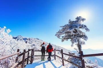 94K*/chiều để đến Hàn Quốc ngắm tuyết, dự lễ hội